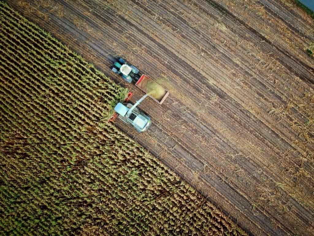 L'agriculture, au cœur des enjeux des transitions et decohésion territoriale