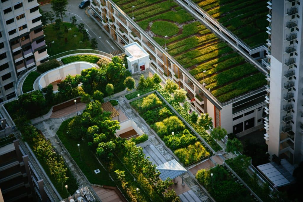PEPS : faire du Grand Paris la première métropole monde post-carbone